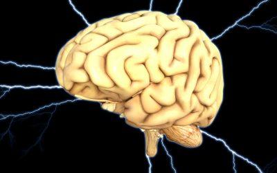Îmbătrânim împreună cu creierul nostru. 3 moduri prin care să-l menținem în formă