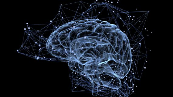Creierul cu care citești și creierul cu care lovești