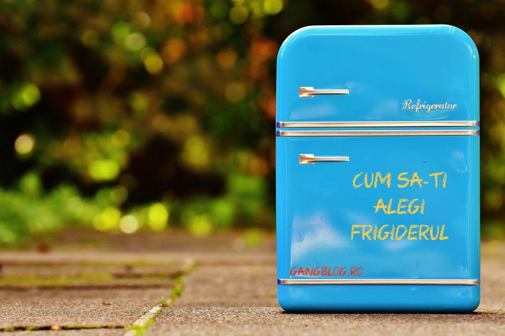 cum să-ți alegi frigiderul