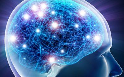 Acidul folic – Beneficii pentru creierul adulților și copiilor